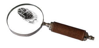 Outsourced Special Investigation Unit Solution for Insurance Fraud