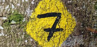 Seven Success Factors for Outsourcing