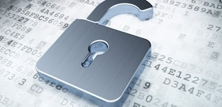 Privacy Concerns and the Monetization of Big Data